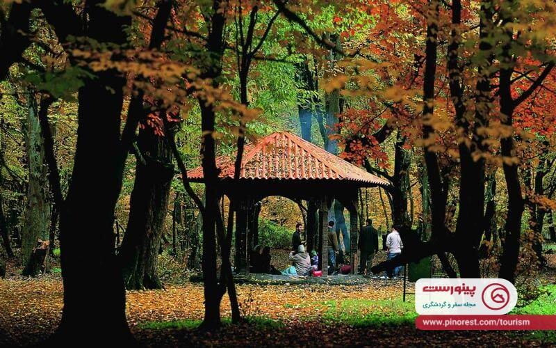 پارک جنگلی ناهارخوران ، ساعاتی رویایی میان درختان و چشمه ها