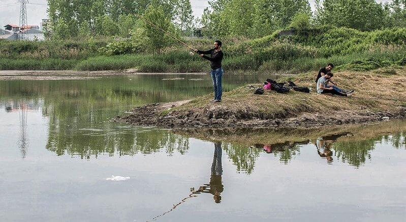 ماهیگیری در تالاب عینک گیلان