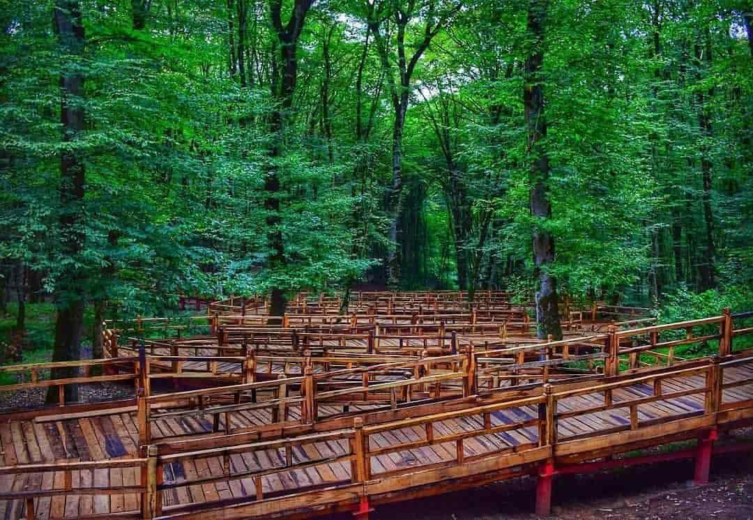 پارک جنگلی النگدره و پل چوبی زیبایش در جنگل ناهارخوران