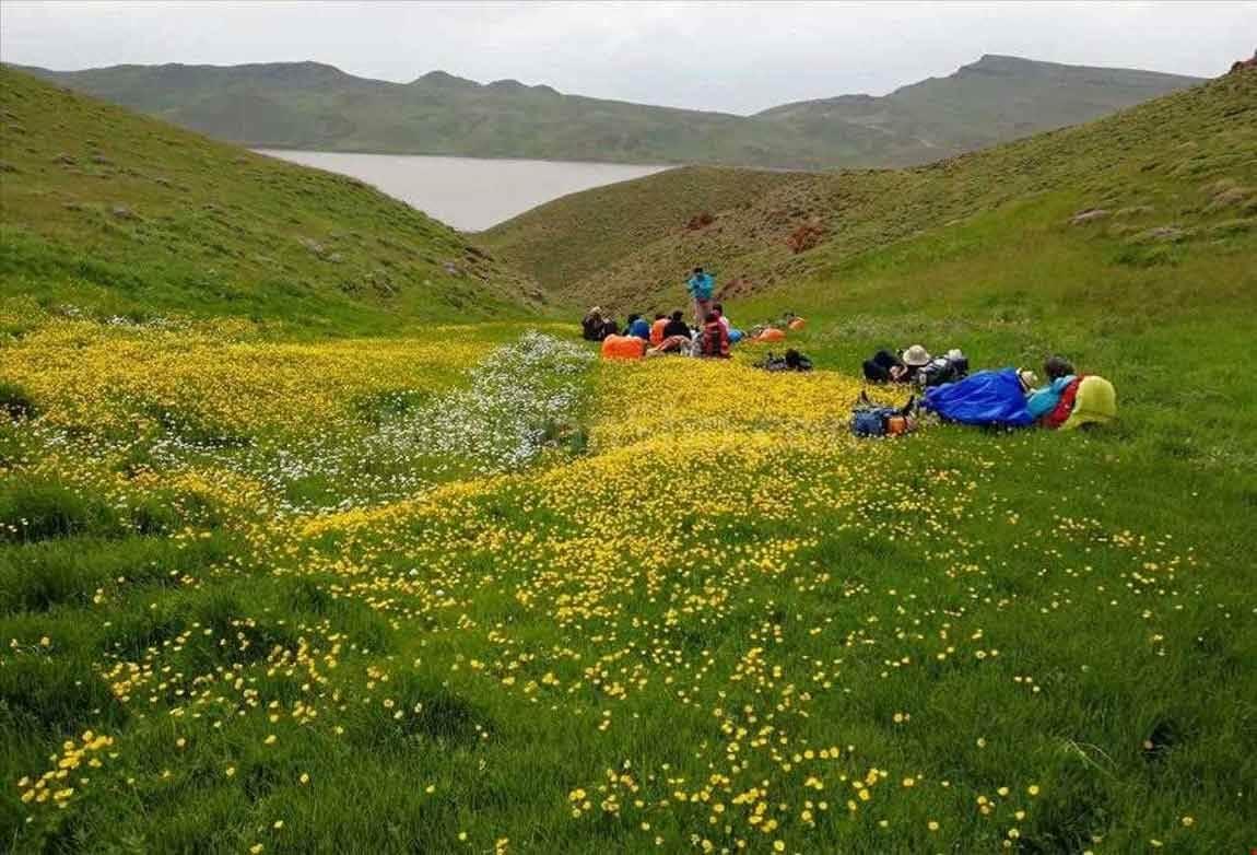 کمپ زدن و ماهیگیری در اطراف دریاچه بکر نئور در استان اردبیل