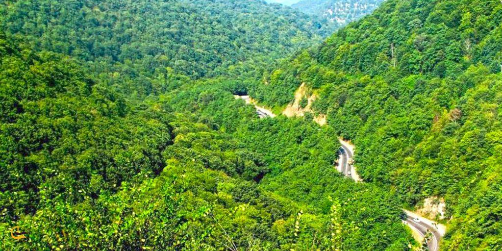 مسیر پر از جنگل و درخت میوه آبشار آستارا