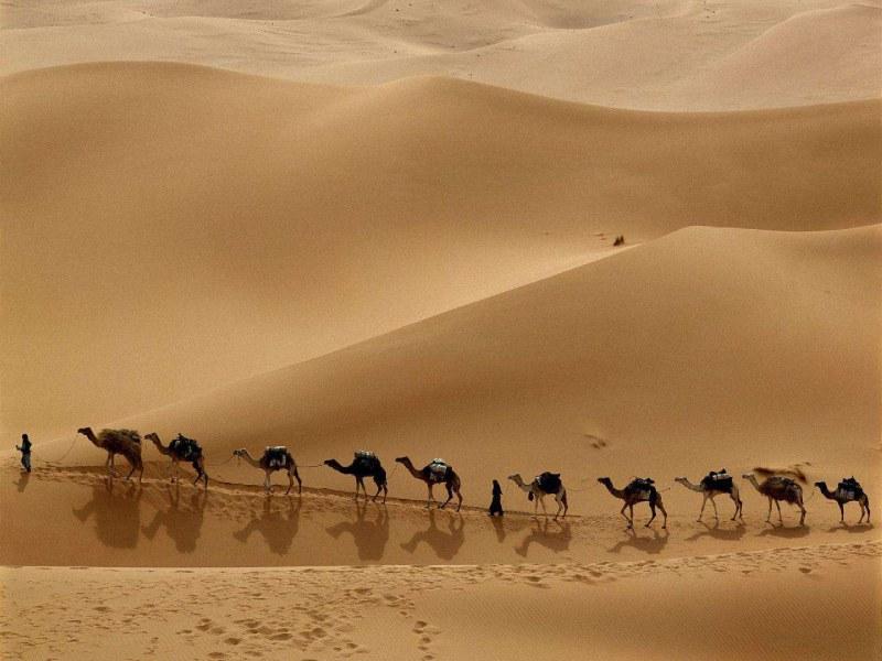 شتر سواری یکی از تفریحات رایج سفر به این نقاط است