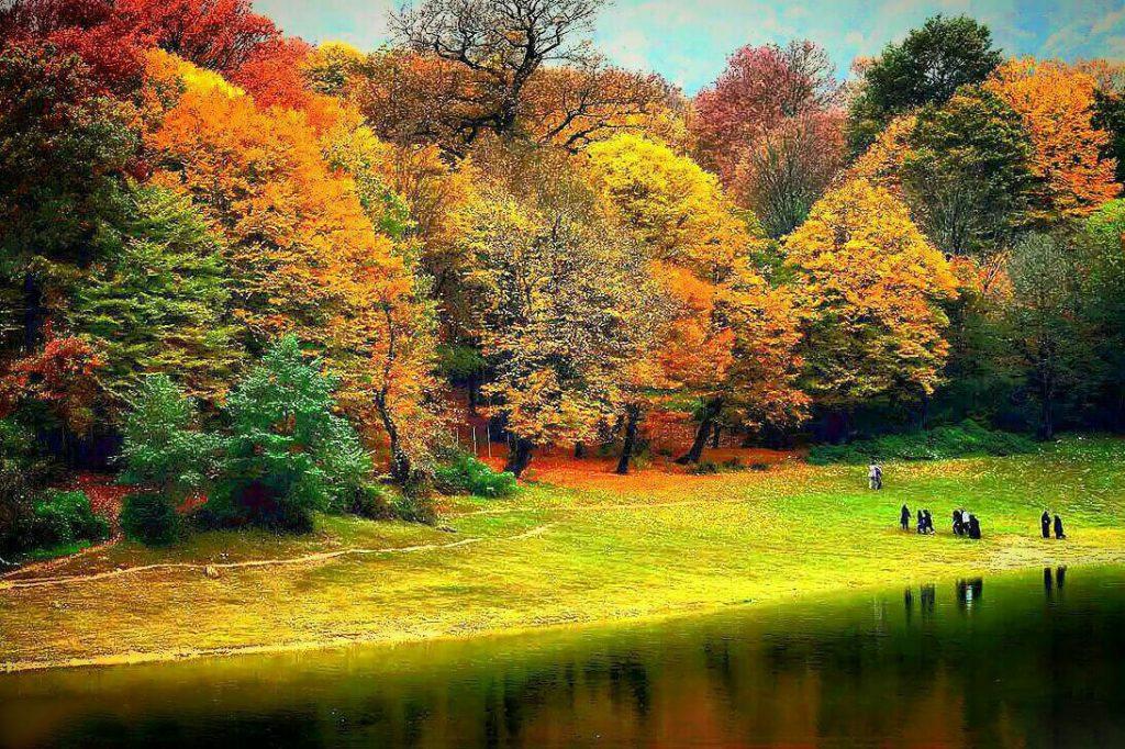 نمایی از پارک جنگلی النگدره