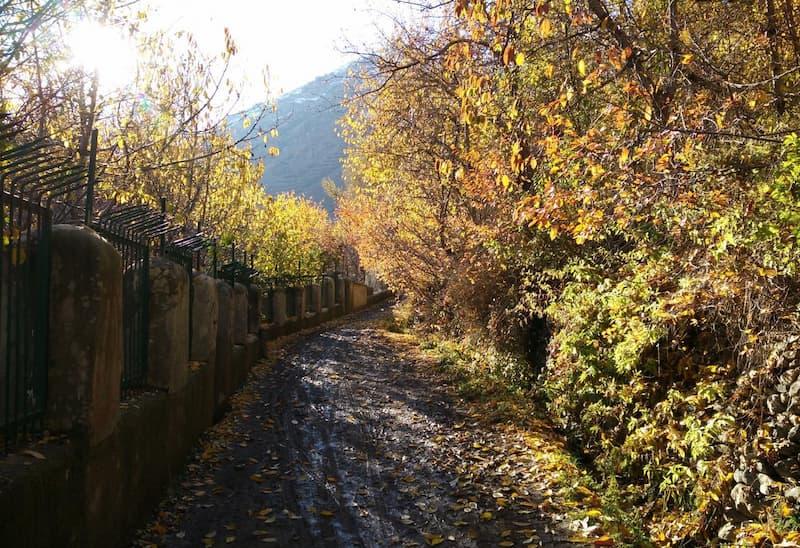 کوچه باغ های روستای آهار در اطراف تهران